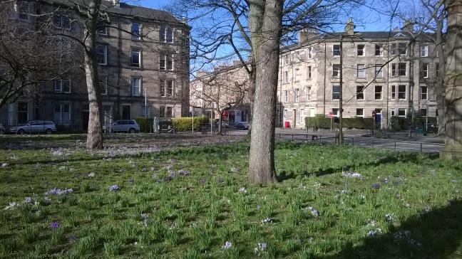 Corner of The Meadows, Edinburgh in Spring 2015